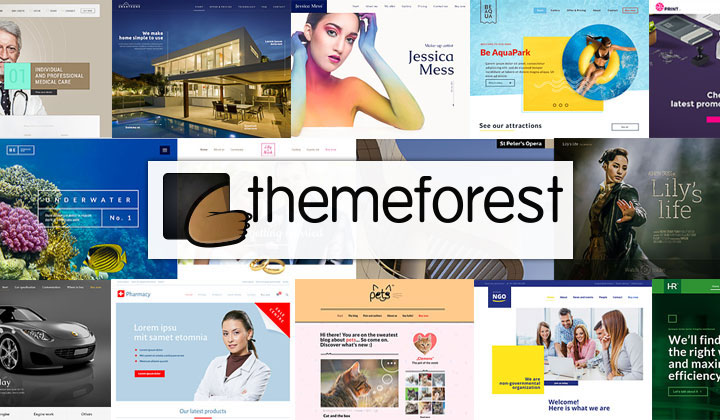 Themeforest buyers guide
